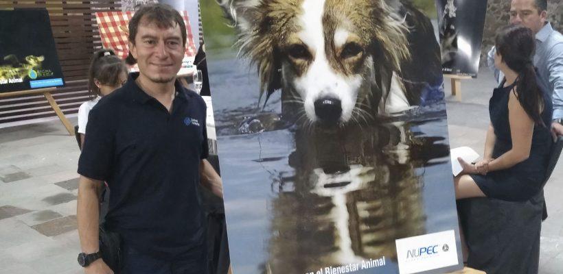 Primer Concurso de Fotografía en Pro del Bienestar Animal