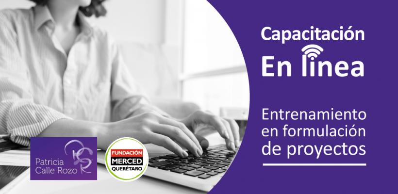 Capacitación en línea: Entrenamiento en formulación de proyectos